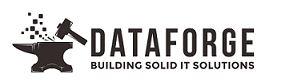 Dataforge Burlington Ontario IT Support header image